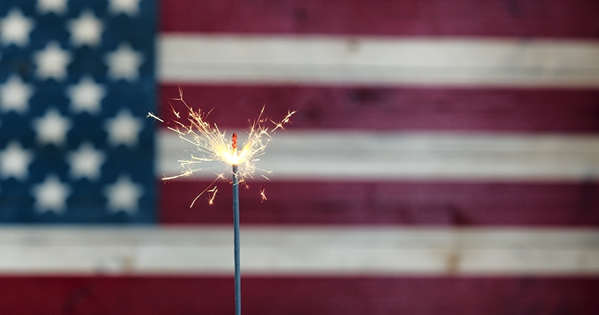 flag-with-sparkler.jpg
